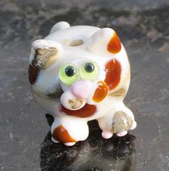 Ivory Calico Cat